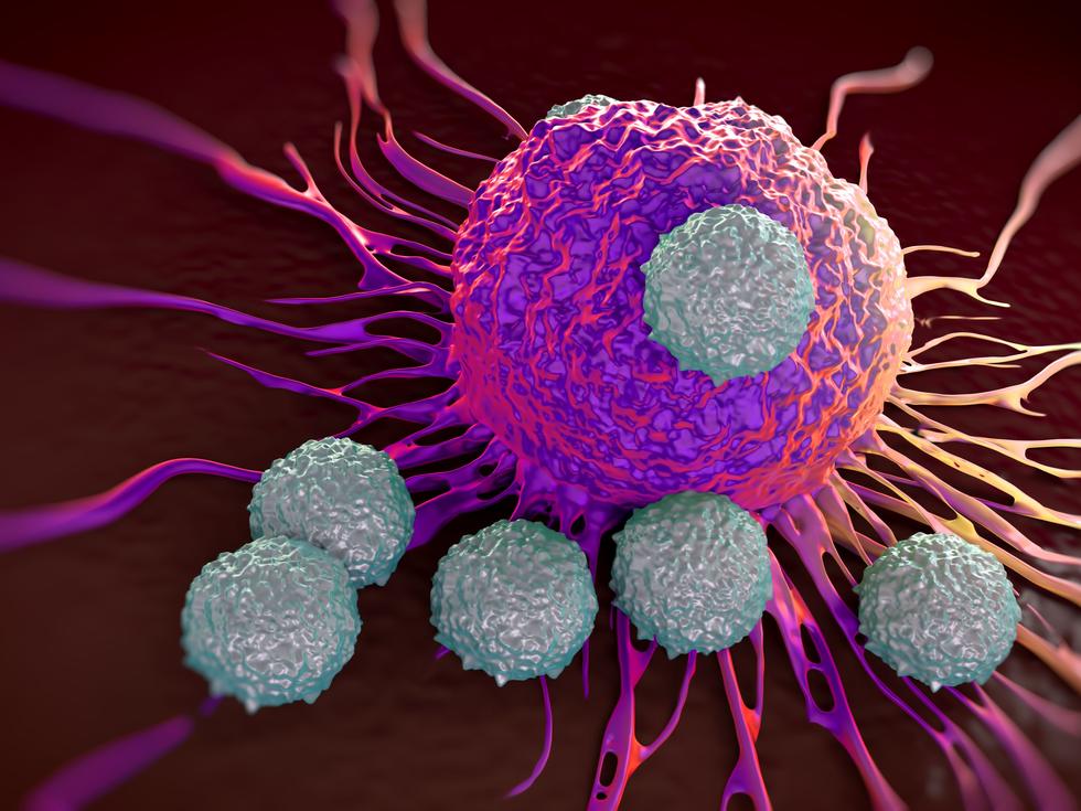 A Descoberta Que Pode Ajudar A Combater Todos Os Tipos De Câncer