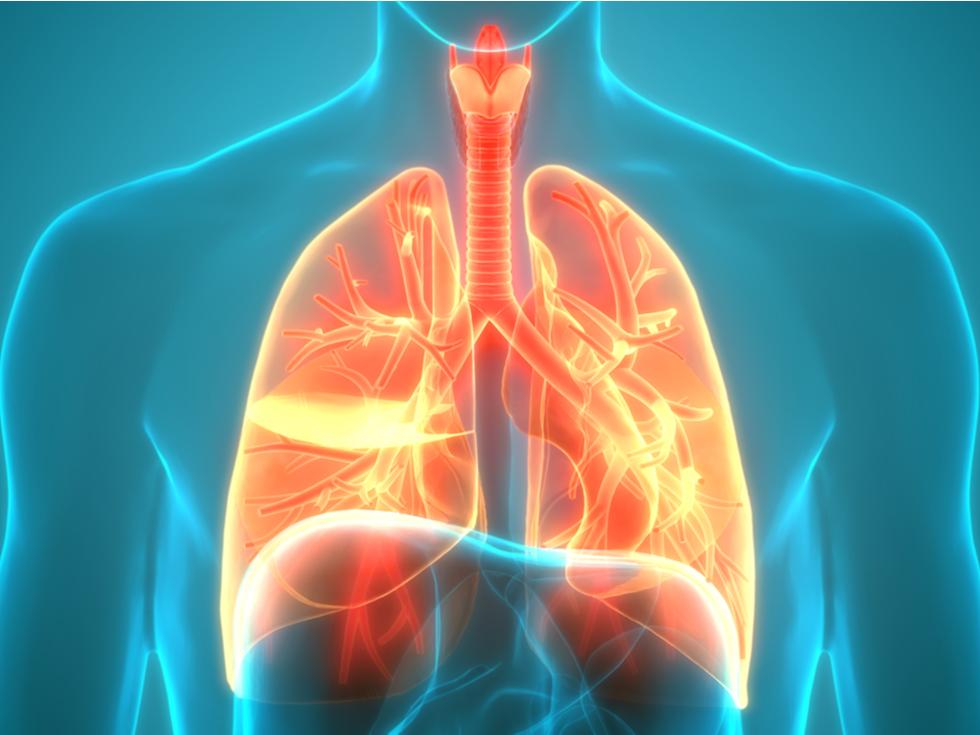 Vacina Contra A Pneumonia